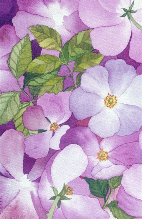 briar rose themes and techniques 741 best watercolor images on pinterest water colors