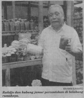 Bibit Jamur Tiram Sragen catatan ringan nur hidayat 2008