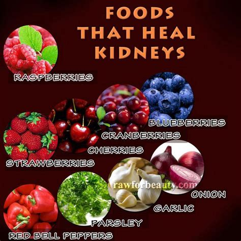 Foods That Detox Your Kidneys by Best 25 Kidney Disease Ideas On Kidney Health