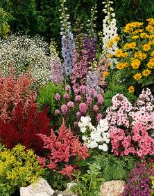 Planting A Flower Garden Planting Perennial Plants
