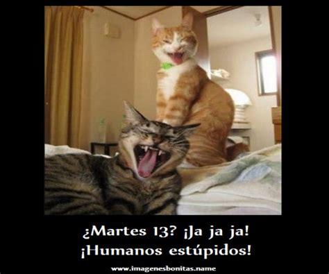 imagenes chistosas feliz martes im 225 genes de martes 13 graciosas para compartir en facebook