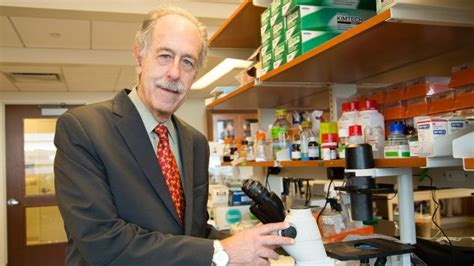 Chief Research Officer by Li Doctor Leads Study Of Type 1 Diabetes Effects On The