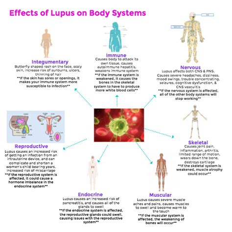 Icc Design Effect Sle Size | effects of lupus on the body by kendall fegraeus