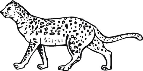 chester cheetah coloring page chester cheetah pages coloring pages