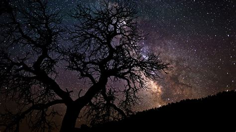 tapete sternenhimmel celestial ceiling hd wallpaper and background