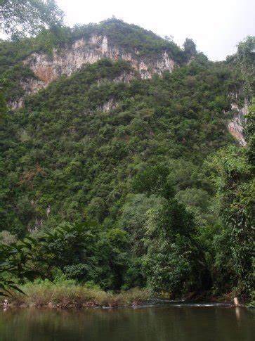Sok Set A Spec by Blood Leeches And Flying Lizards In Khao Sok