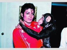 Forgotten and abandoned: Michael Jackson's ageing chimp ... Jane Goodall Death