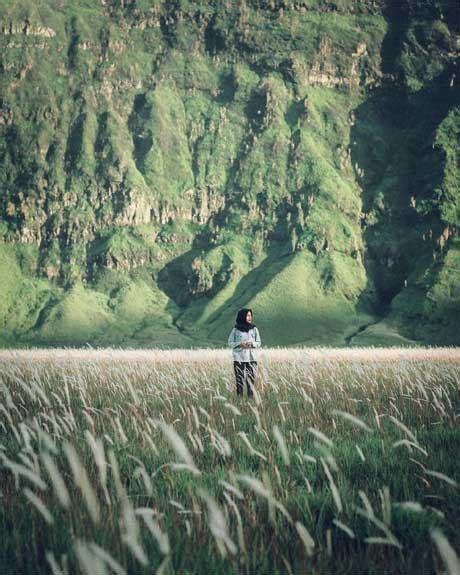 padang rumput bromo jelajahnesiacom