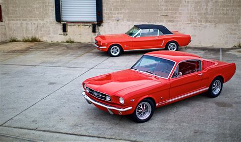 aussie mustang ford mustang needs aussie rivals says brand photos 1 of 4