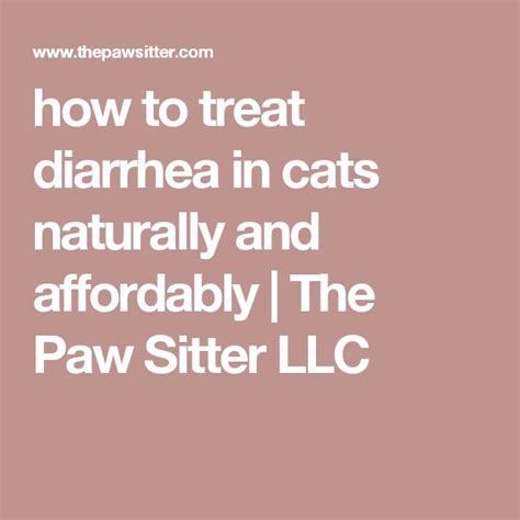 how to stop a s diarrhea 17 best ideas about cat diarrhea on cat health cat grass and cat