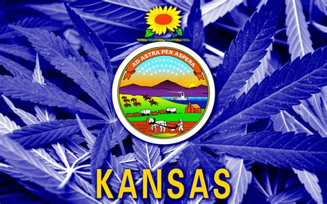 Kansas State Court Search Court Out Of State License Plates Don T Justify Search 183 High Times