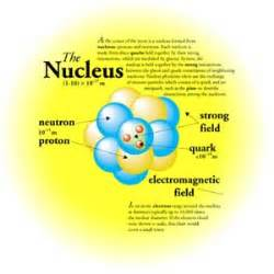 What Helps Protons Stay Together In The Nucleus The Nucleus Atomic Exploration