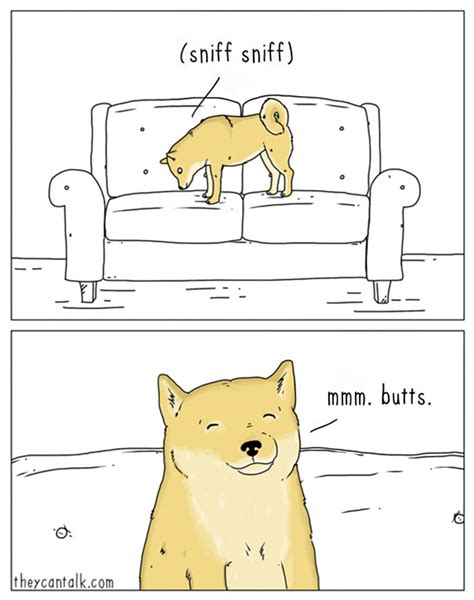 they can talk a collection of comics about animals if animals could talk 10 new pics bored panda