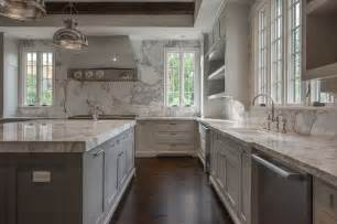 Metal Wall Art For Gardens - sink flanked by dishwashers transitional kitchen