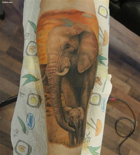 african elephant tattoo designs elephant