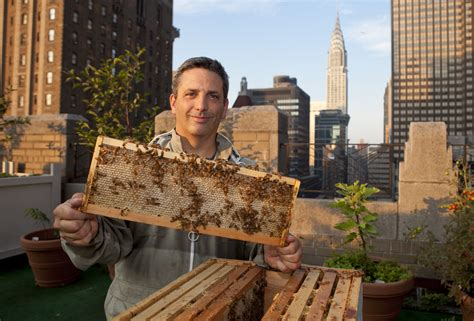 Bee Keeping By The Times Bee Keeper This Is New York Andrew Cot 233 Beekeeper