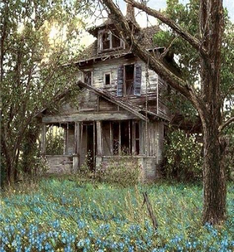 the 25 best abandoned houses ideas on