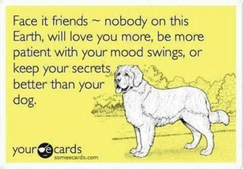 dogs best friend dogs best friend quotes sayings