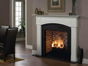 Fireplace Images shop fireplaces amp stoves at homedepot ca the home depot