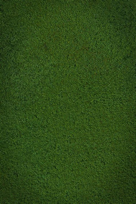 iphone wallpaper green grass green grass wallpaper wallpapersafari