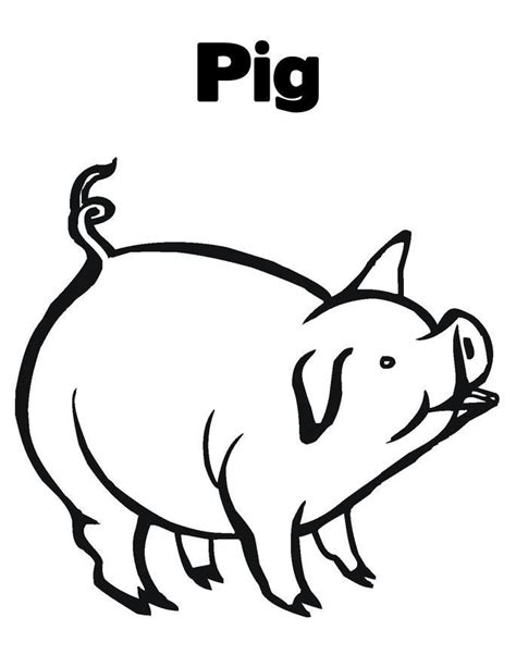 funny creature 26 pig coloring pages for kids print free printable pig coloring pages for kids pig images