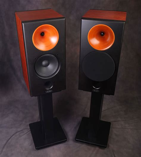 shengya v 218 wood horn loaded tweeter bookshelf speaker