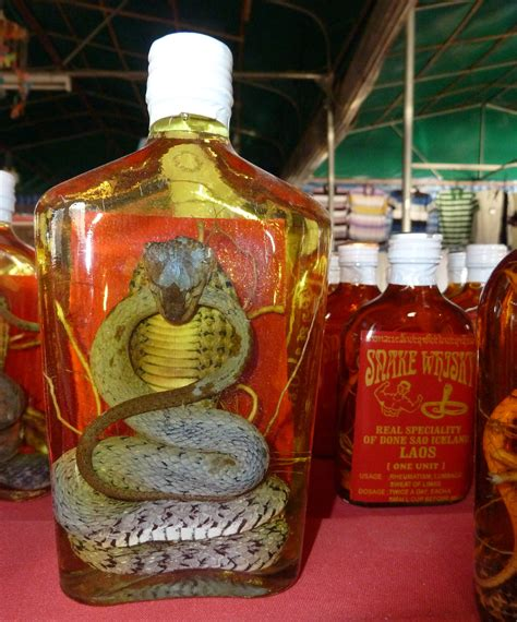 Romantic Dinner Recipes by Snake Wine