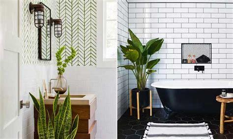 como decorar banheiro flores artificiais plantas e flores na decora 231 227 o do banheiro veja como usar