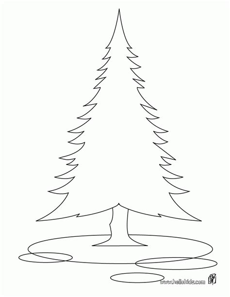 coloring page of pine trees pine tree coloring page coloring home
