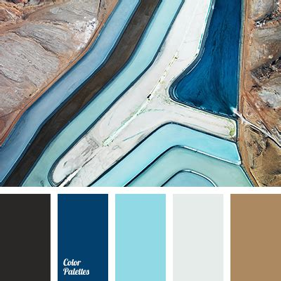light blue black and white light blue and brown color palette ideas