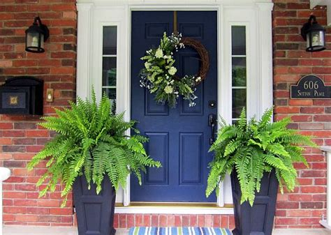 Front Door Potted Plants 7 Potted Plants For Front Door Hometone Home Automation And Smart Home Guide