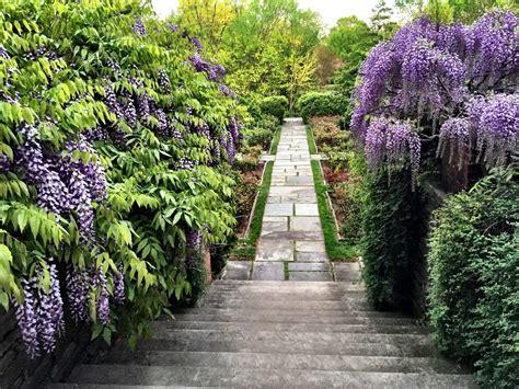 Dumbarton Oaks Gardens by Dumbarton Oaks Gardens Washington D C Harvard S