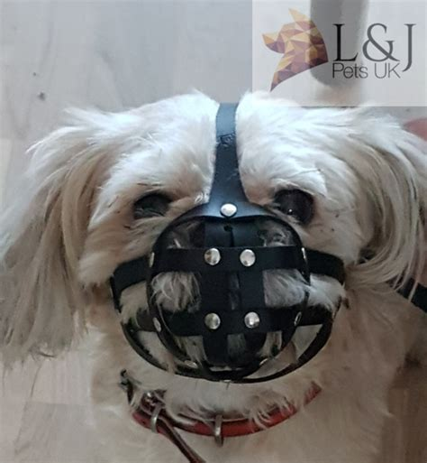 shih tzu muzzle leather muzzle for shih tzu and other flat faced snout s ebay