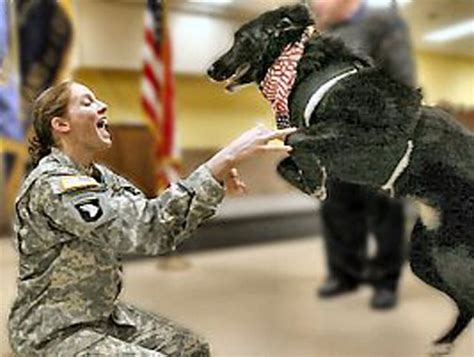 15 soldiers coming home will make you cry tears of
