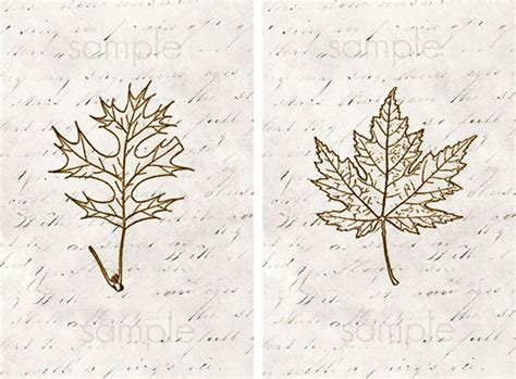 printable leaf art printable leaf art live laugh rowe