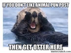 Animal Meme Generator - if you don t like animal pun post