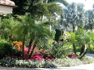 93 best ideas about florida landscape plants i on