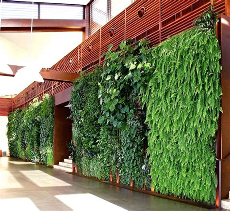 Vertical Gardens In Lebanon Based On Traditional Arabia Green Wall Gardens