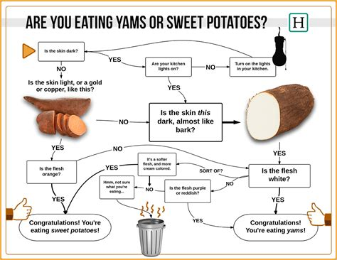 degeneres doesn t sweet potatoes from