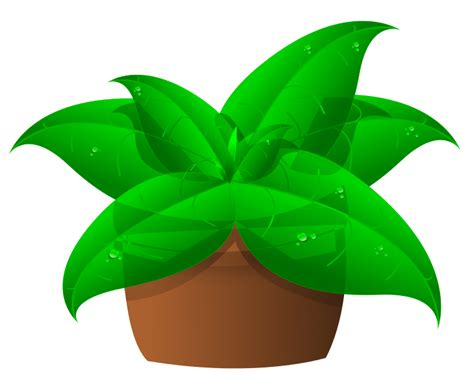 free plant clipart cliparts co