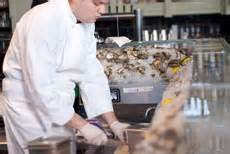 Does A Chefs Size Matter by The Oyster Guide For Chefs Does Cup Size Matter