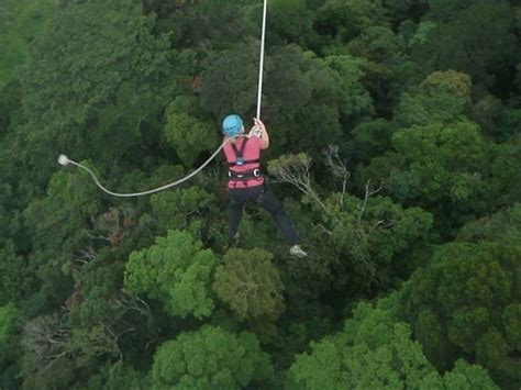 monteverde zip line tarzan swing costa rica tourist attractions photos maps ideas for