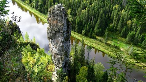 nature landscape trees water river stream rock