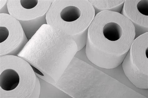 using toilet paper rolls toilet paper harlow