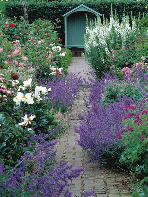 how to plant a cottage garden best shrubs for lasting loveliness