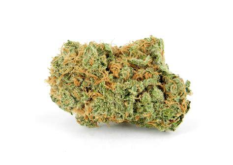 house of buds mango haze house of cannabis