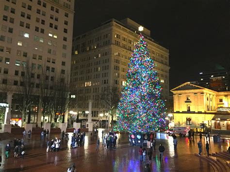 christmas tree lighting downtown portland or in downtown portland gather in glow of city s tree in s