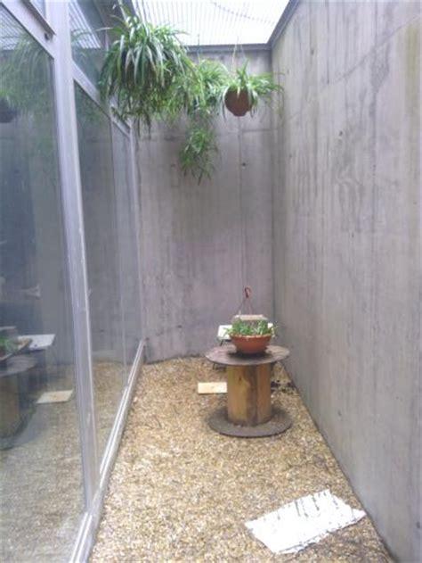 patio ingl 233 s en s 243 tano quiero hacer un invernadero y