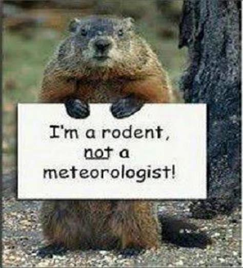 groundhog day last day rodent meteorologist he s not still hoping for snow
