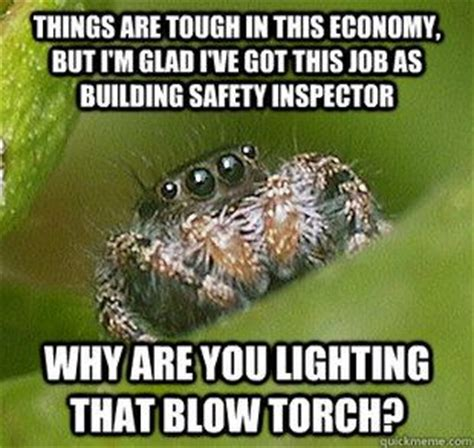 Misunderstood Spider Meme - misunderstood spider meme quickmeme grins and giggles